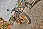 Motorbike HDR by TheSoftCollision
