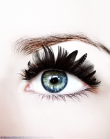 Feather Eye by foxxycleopatra