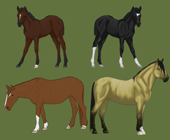 Mustang Lineage Adoptions Closed by theRyanna