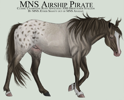 MNS Airship Pirate by chaoticXinsane