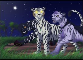 We come out by nightfall by ShilaDaLioness