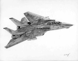 F-14D Commission 6 by Raptorguy