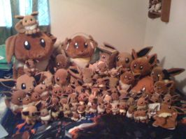 Eevee Plush Collection 2013 by Eevee-Kins