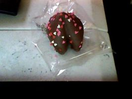 Chocolate Fortune Cookies by Nobody-at-heart