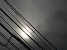 Wired by duleantovi