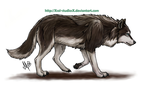 Walking Wolf by XSol-StudiosX