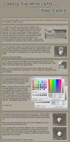 Desaturating Lights in Poser by NightsongWS