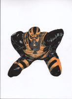 WWE Goldust by RadPencils