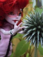 2014 - Operetta and flowers. 7 by Jessi-element