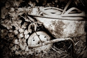 wheelbarrow by LS-Coloringlife