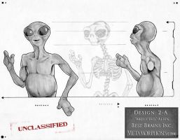 Abducted Alien 1996 by MetaMakeUp