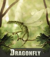 DRAGONFLY by BaltasarVischi