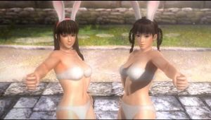 Hitomi and Leifang from Dead or Alive 5 by TimothyB25