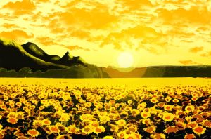 Field of the sun by HvN2310