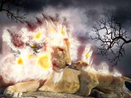 Fire Lion by whendt