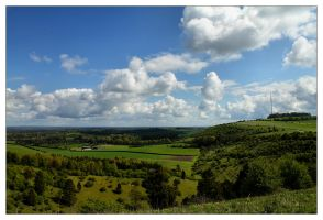 The Hampshire Downs by Bogbrush