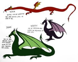 Different types of Dragons by Jakegothicsnake
