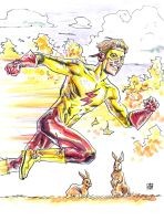 Teen Titans: Kid Flash by deankotz