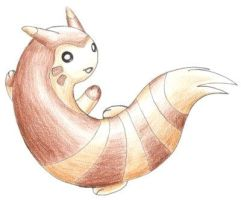 Furret by Tyltalis