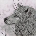 Grey Wolf - 2012 by Pearl-Kitsune