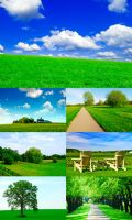 Green-nature_wallpaper by p30room