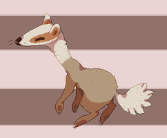 Erythristic badger by X--O