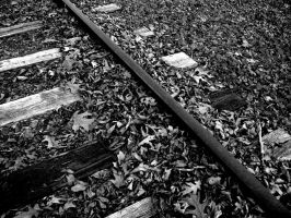 High-Contrast Railroad by MummyWriter
