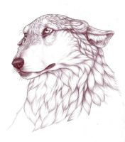 Wolfe by nikkiburr