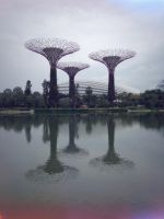 The Supertrees by kitkatyj