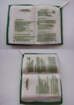 Book of enchantments and incantations. by Carlsbergensis