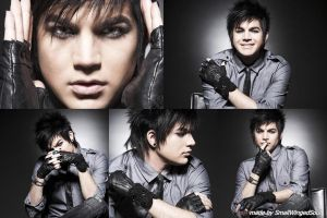 Adam Lambert Wallpaper 7 by SmallWingedSoul