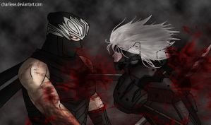 Hayabusa vs Raiden by charlieXe
