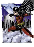 The ROBIN by wansworld