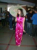 Style of a Japonese Dress by larg-san