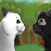 Awkward Staring {Contest Prize} by Streamwhisker