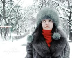 Colours of the Winter by since91