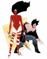 DUETS: Elektra and Wolverine by kevinwada
