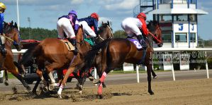 Horse Racing 227 by JullelinPhotography