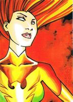 Phoenix sketch card by KidNotorious