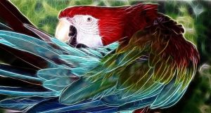 Green Wing Macaw Fx by AdamF-X29