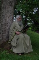 Reading Wizard 2013-06-17 08 by skydancer-stock