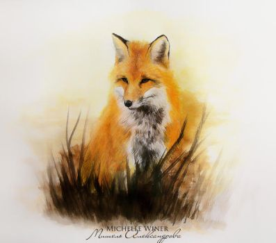 Fox by Michelle-Winer