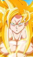 Super Saiyan God? by salvamakoto