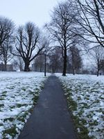 Straight Snow Path by alinthea