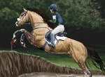 CLOSE UP Challenge of Ares - Cross Country by BH-Stables