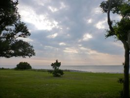 MidJuly Morning on Harkers Island by usedbooks
