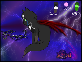 Ref sheet: Raven by Rainstarlightsky