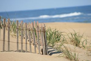 fence on the dune by averyskees