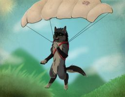 Sky diving wolves... by wolfheart5