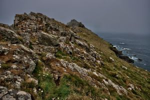 Gurnards head 2 by forgottenson1